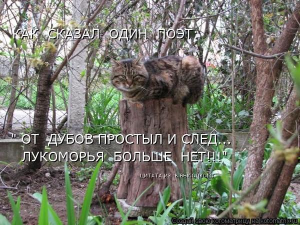 Стих у лукоморья дуб зелёный - у лукоморья дуб зеленый стих mp3