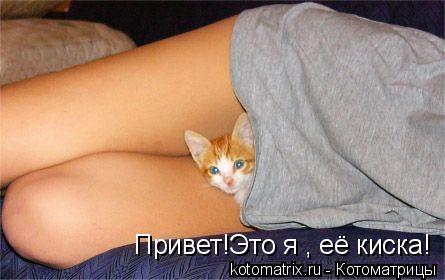 kiski-vkontakte
