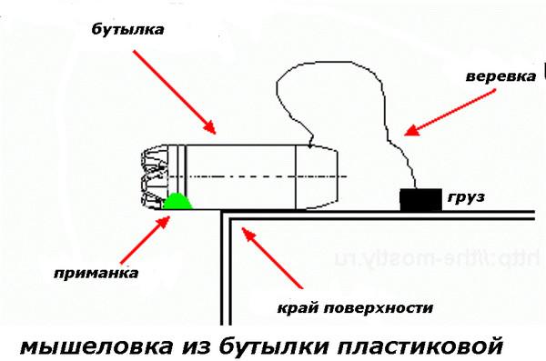 Как сделать мышеловку в домашних условиях простую