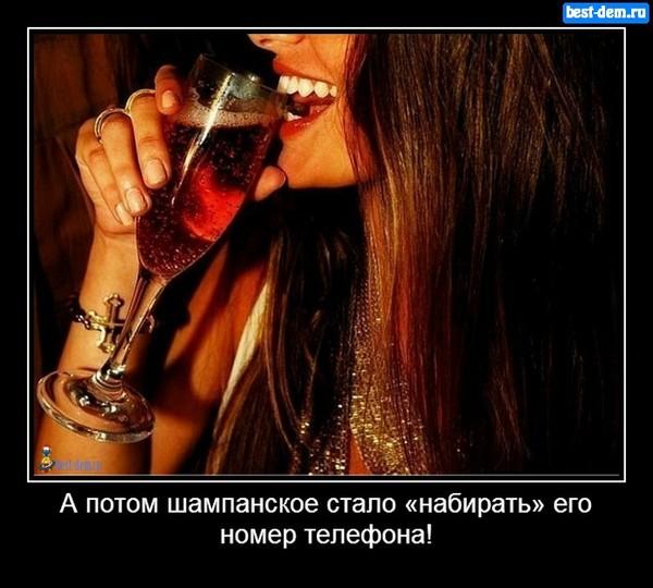 Сборка выпивших стервозных женщин  265469