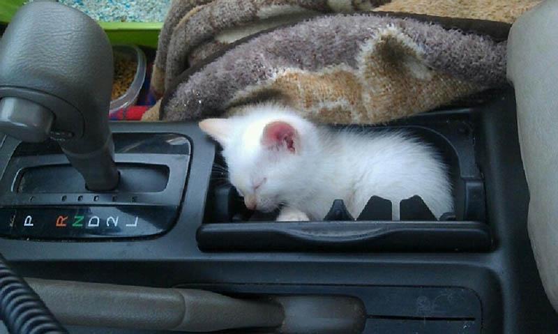 Бардачок в машине своими руками