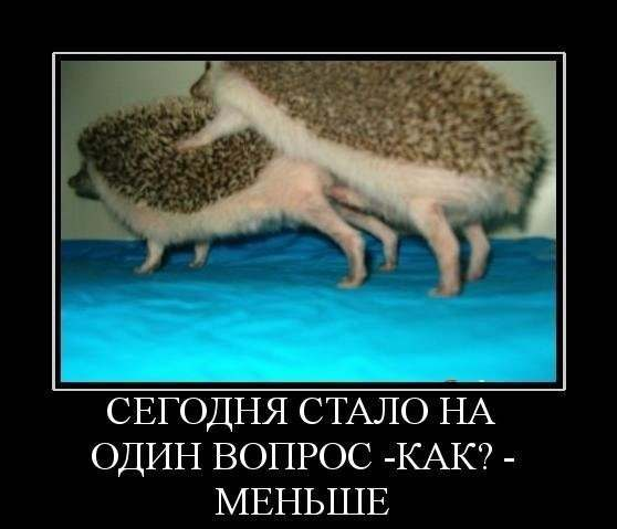 yalta-intim-dosug