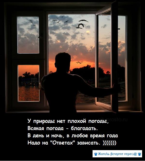 Днем окна домов кажутся темными почему