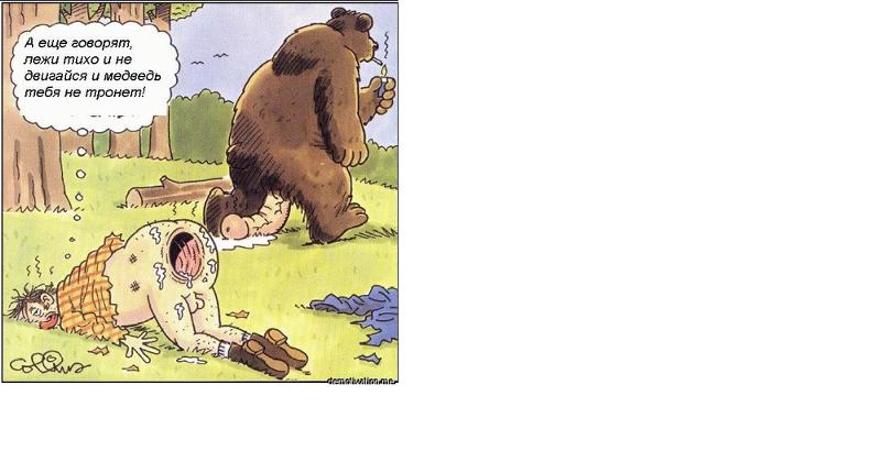Показать Мультик Охотник И Медведь,медведь Изаяц.порно