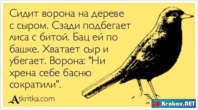 Ворона открытка
