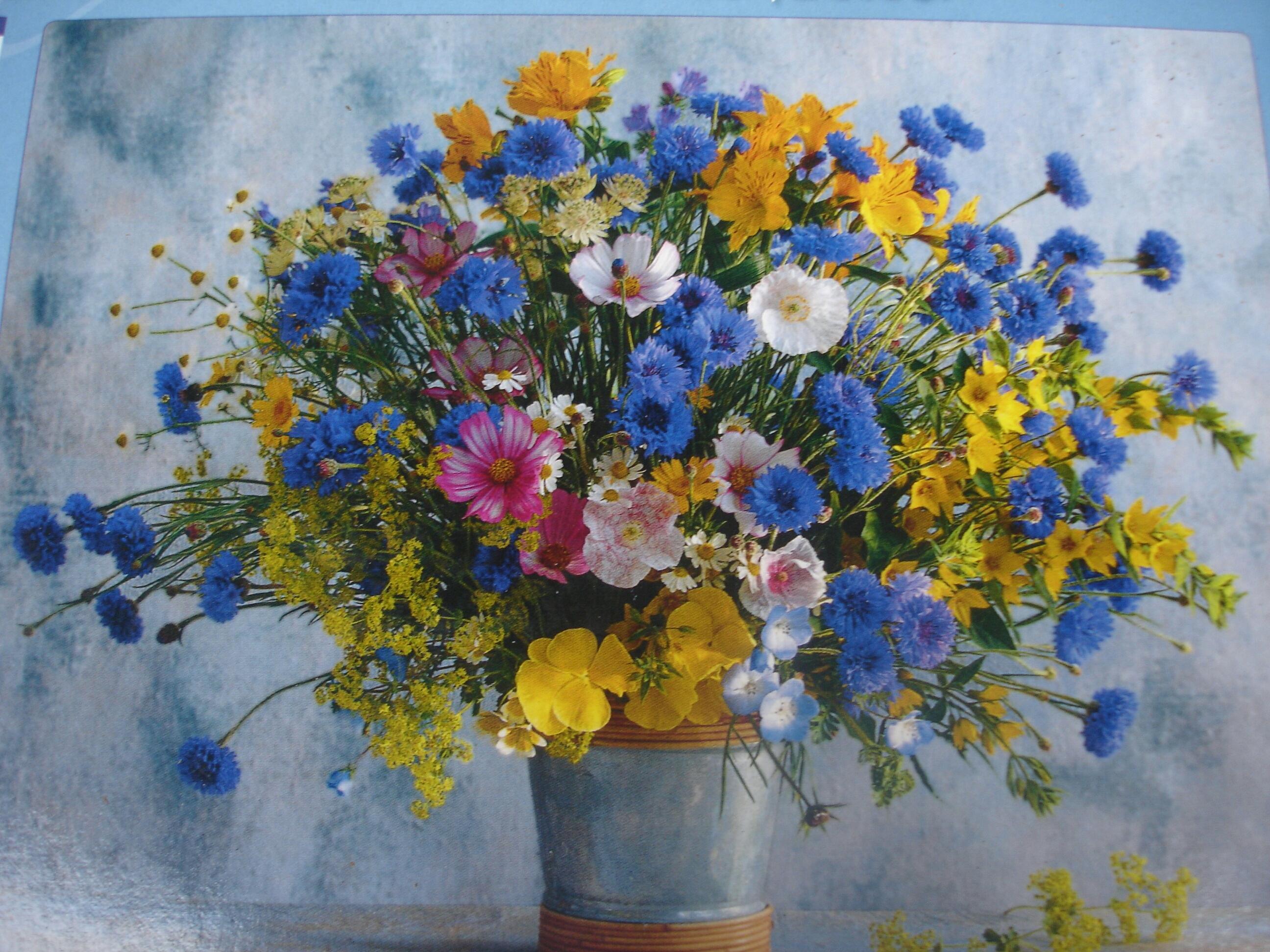 Открытки и фото полевые цветы