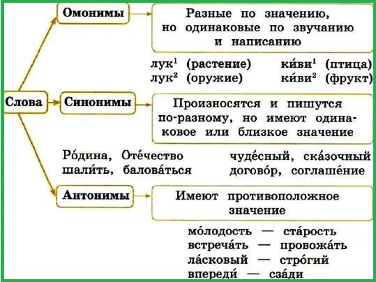 синонимы антонимы омонимы 4 класс таблицы