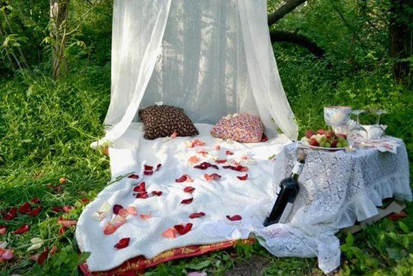 Фото романтический ужин на природе идеи
