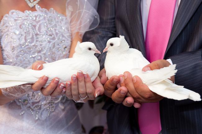 Куплю голубей на свадьбу