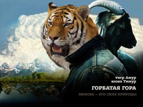 tigr-kozel-seks
