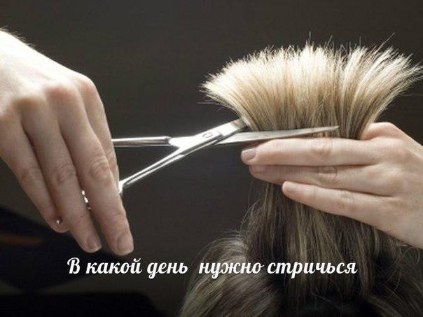 К чему снится когда стрижешь волосы другому