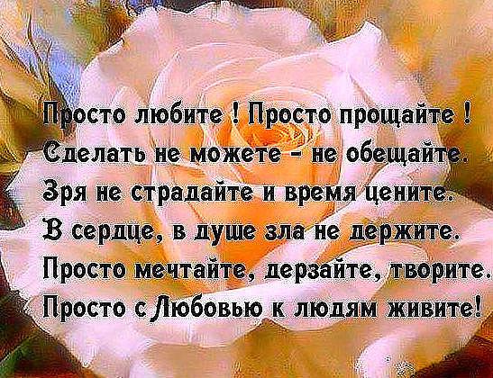 Стих я любила от души