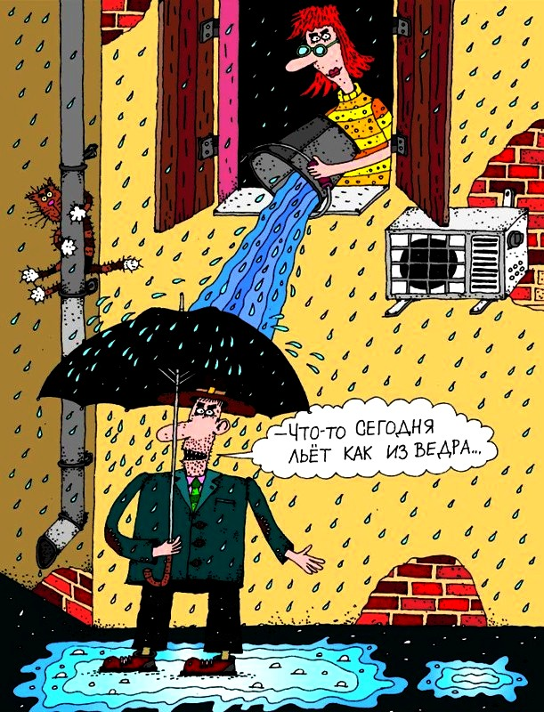 Дожди Анекдоты