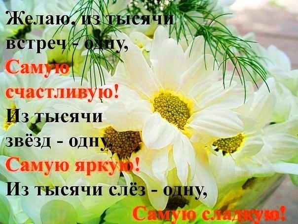 Поздравление с днем рождения ромашки для тебя
