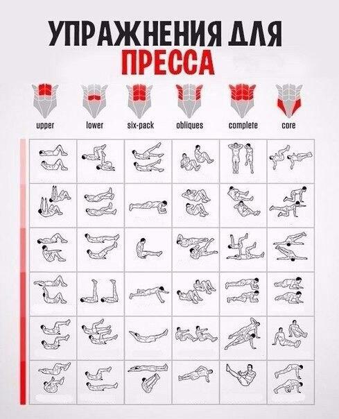 Упражнение для пресса живота в домашних условиях