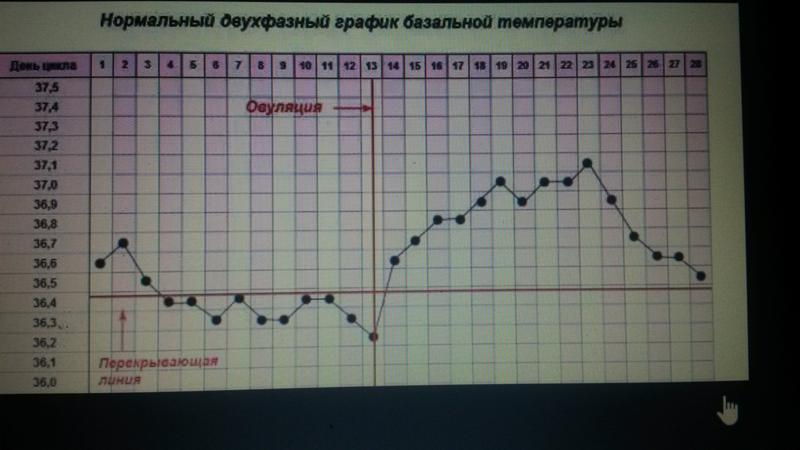 как построить график в виде таблицы - AskForMe.ru - Спроси меня - сервис вопросов-ответов