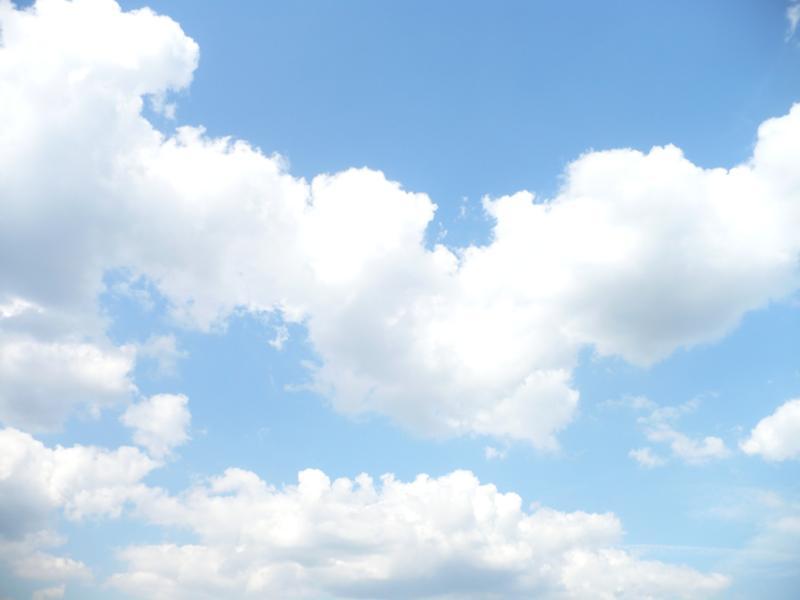 Walk, дотянуться, до облаков, дорога к облакам, драма, роберт земекис, биография, джозеф гордон-левитт, бен кингсли
