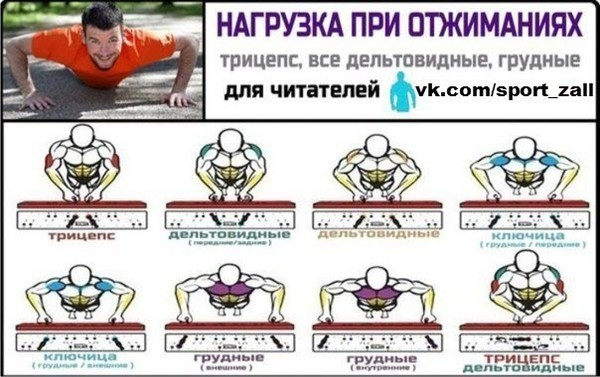 Тренировка на грудные мышцы в домашних условиях