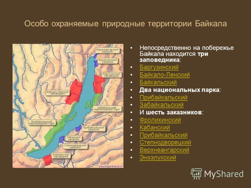 Особо охраняемые природные территории государственные природные заповедники