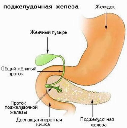 где лечить поджелудочную железу санатории