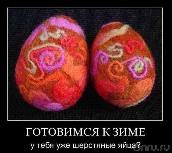 Лизнула яйца