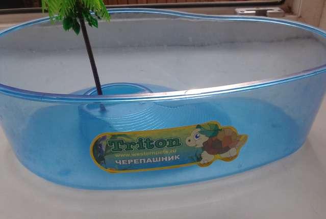 Ответы@Mail.Ru: Как делать ромашковые ванны для красн. черепашки?