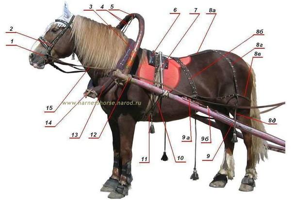 Дуга для лошади своими руками фото