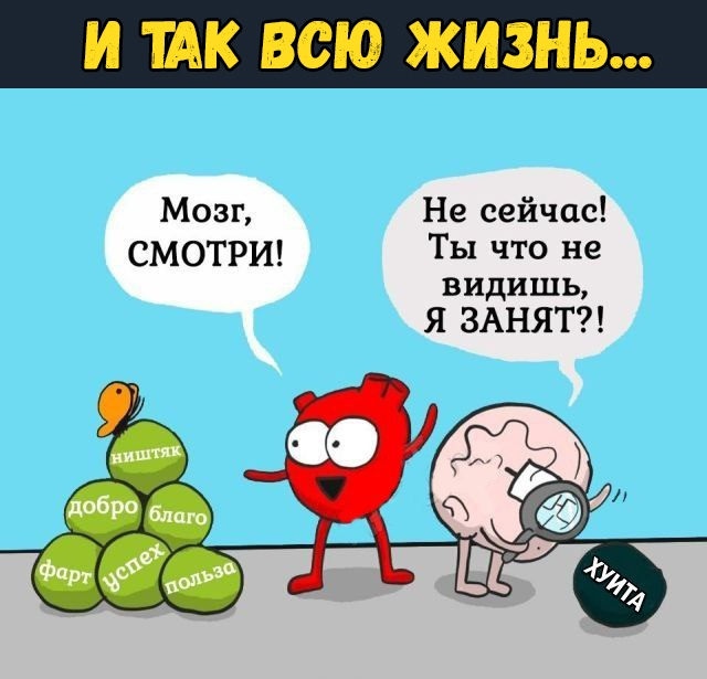 Анекдот Мозги