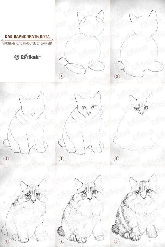 Рисунки кошки красками поэтапно