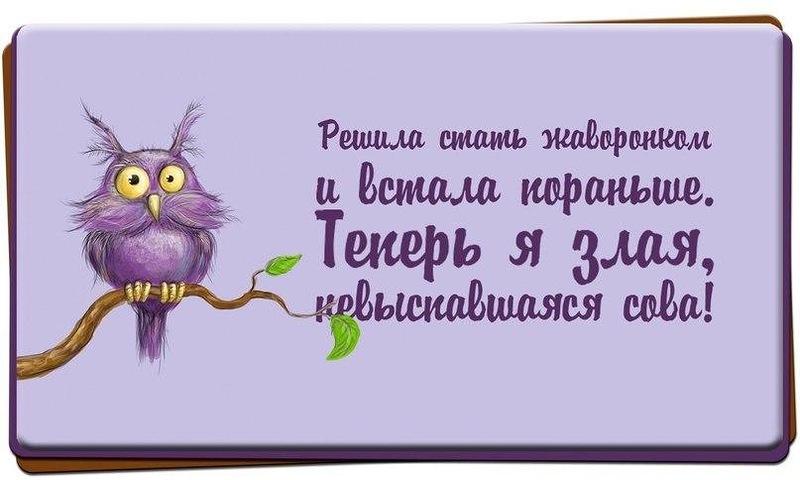 http://otvet.imgsmail.ru/download/20378447_c558d6d57f13aaf0524d091674a7db98_800.jpg