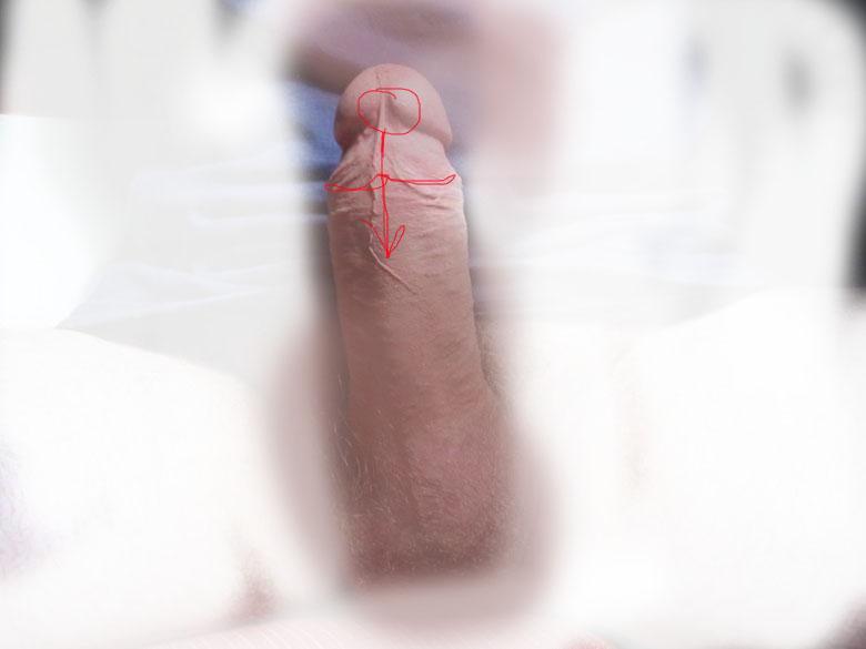 brizgi-spermi-iz-chlena