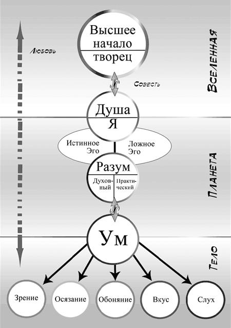 Души схема