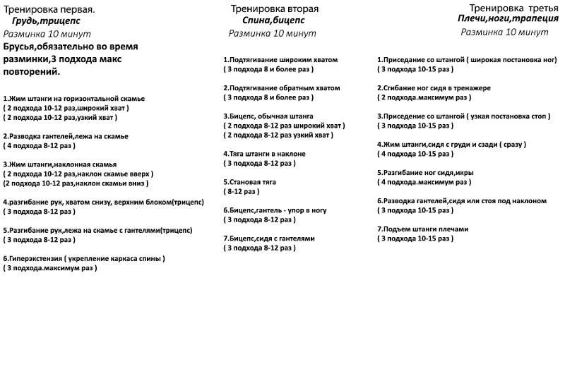 Схема тренировок для эндоморф 28