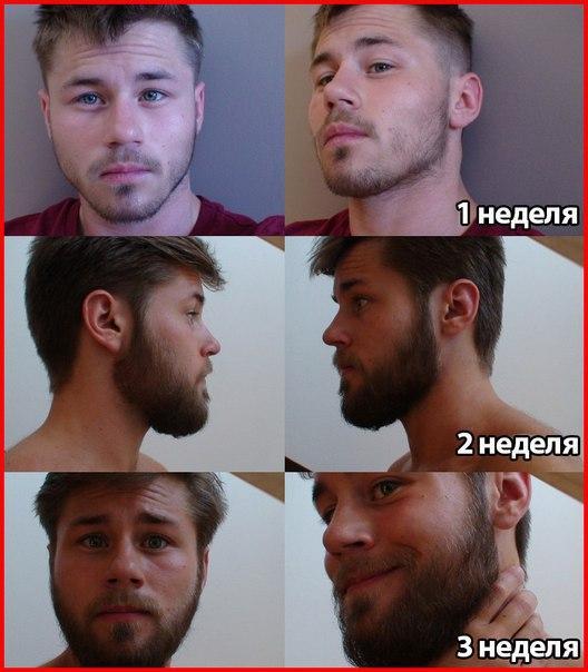 Как быстро сделать бороду
