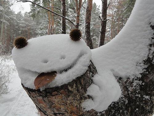Какой формы снег? - AskForMe.ru - Спроси меня - сервис вопросов-ответов