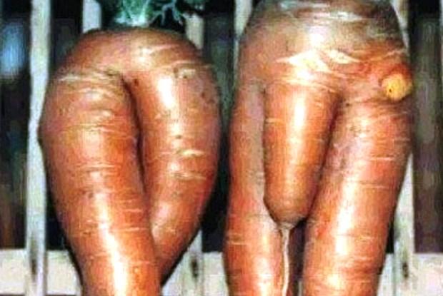 овощи в пизде фото № 869142 бесплатно