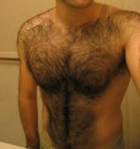 Growing a hairy chest