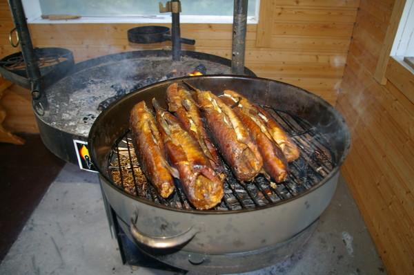 Как вкусно приготовить на костре рыбу