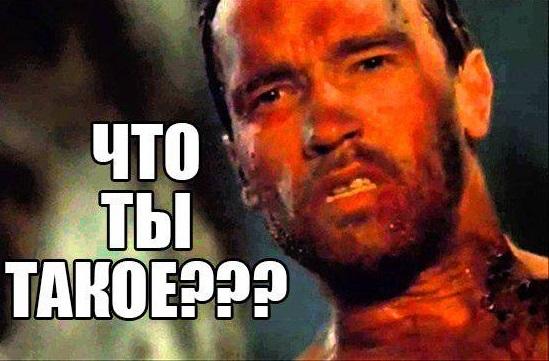blyadushnik-chto-eto