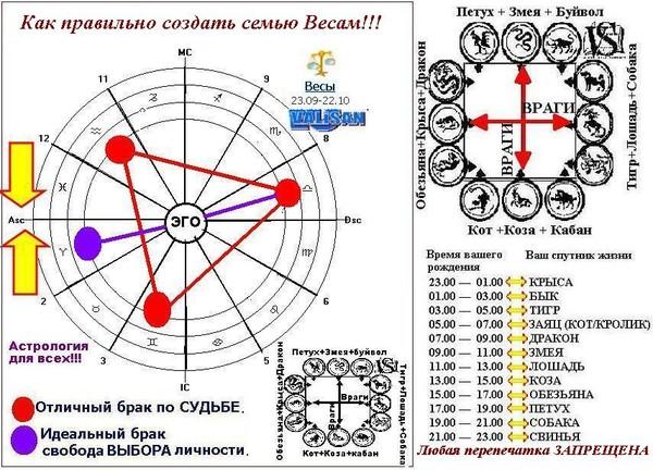 Любовный гороскоп весы женщи  овен мужчи