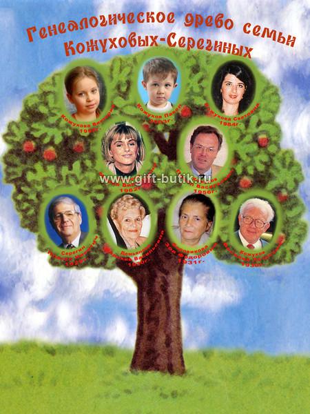 Генетическое древо семьи как сделать для садика
