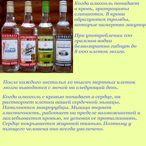 Полезные ли настойки на водке