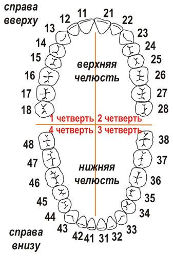 салоны красоты санкт-петербург на карте