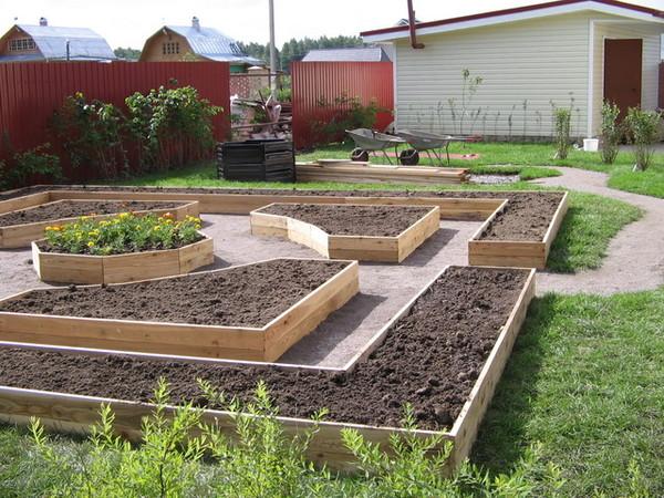 Интересные идеи для сада и огорода своими