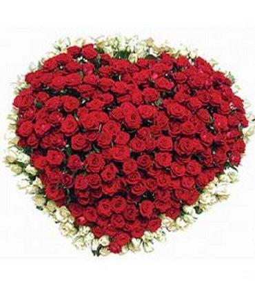 http://otvet.imgsmail.ru/download/29373147_86f8040f2b68668f485a9fa2ed9921a9_800.jpg