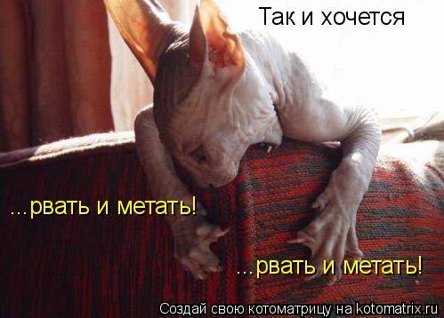 foto-golih-devushek-i-v-stringah