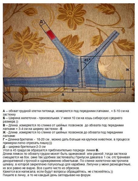 Ответы@Mail.Ru: Как сделать своими руками шлейку для кота.