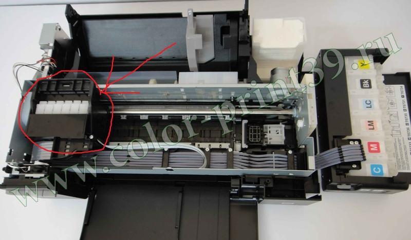 Замена печатающей головки epson t50 reset