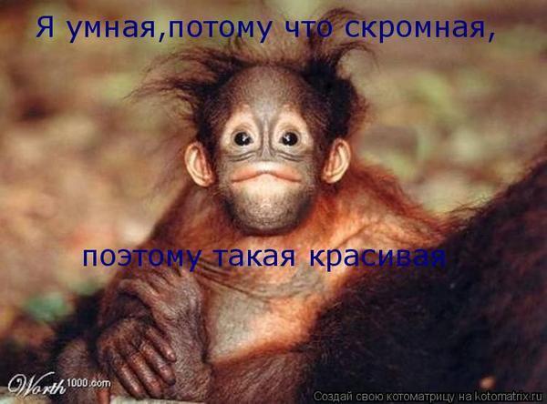 http://otvet.imgsmail.ru/download/34310c947b5430d036d3dcf628baf4f7_i-496.jpg