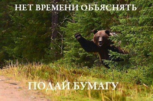 nayti-foto-i-video-golih-devushek